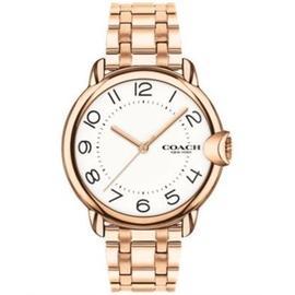 【Coach】/   Arden系列設計錶 女錶 Watch/ CO14503598/ 台灣總代理原廠公司貨兩年保固